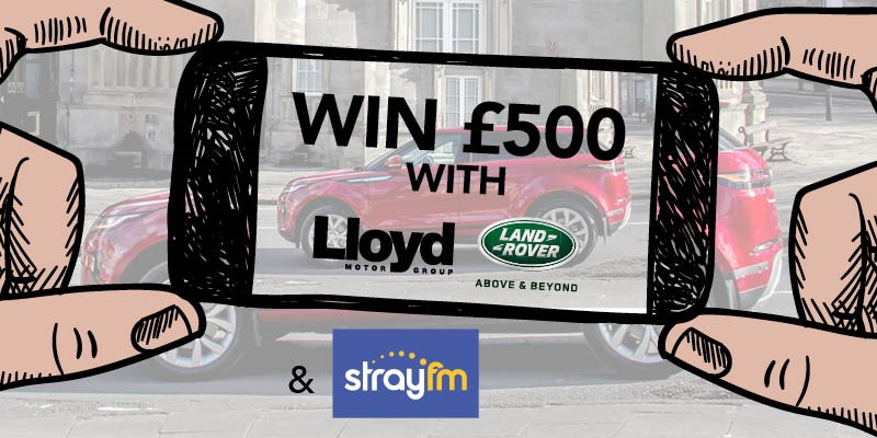 lloyd, land, rover, ripon, competition, evoque, range, stray, fm