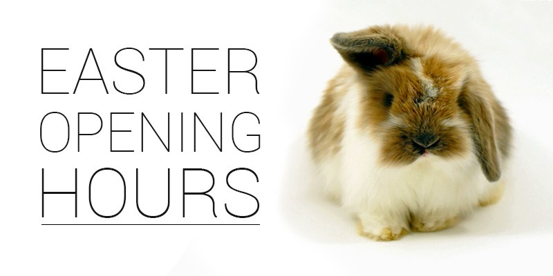 Lloyd Motor Group Easter Opening Hours.