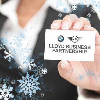 BMW Business Users. From individuals to fleets, our Business team are here to support your company car needs.